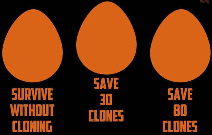 intruders-eggs.jpg