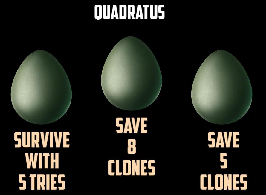 quadratus-end.jpg